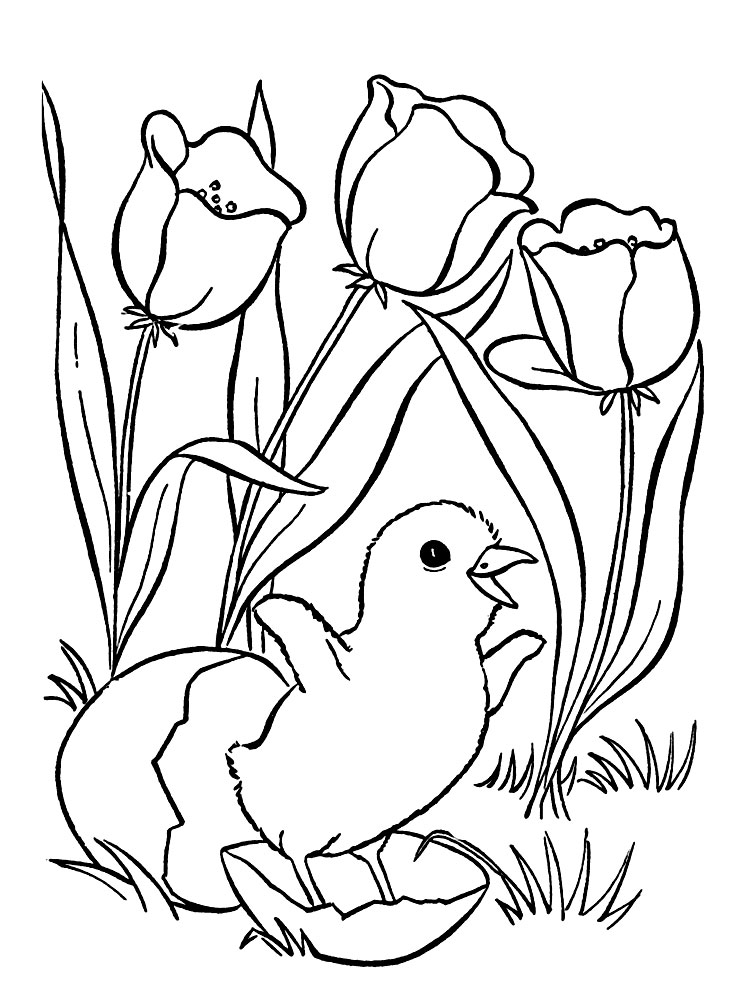 Spring Easter Egg Coloring Pages For Adults Spring Best