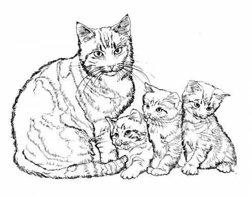Раскраски кошки с котятами