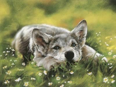 Волки и другие звери художница lesley